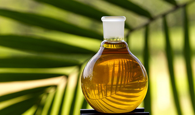 WHAT ON EARTH IS PALM OIL?